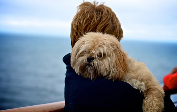 pet friendly cruises